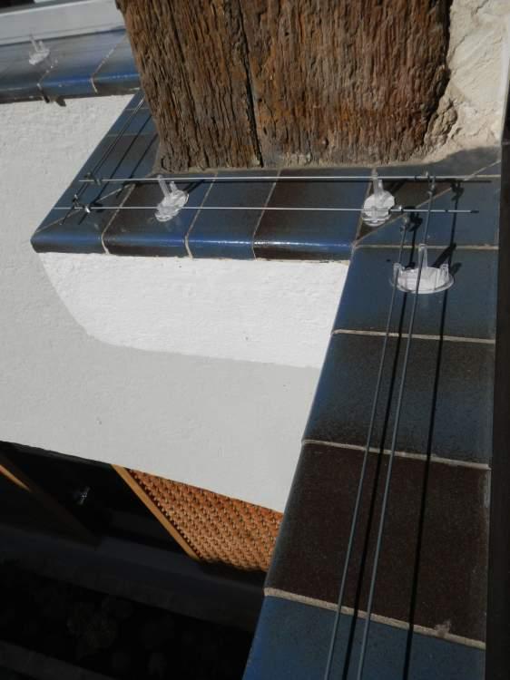 pose d 39 un dispositif anti pigeon sur l 39 h tel palace le byblos st tropez combattre les. Black Bedroom Furniture Sets. Home Design Ideas