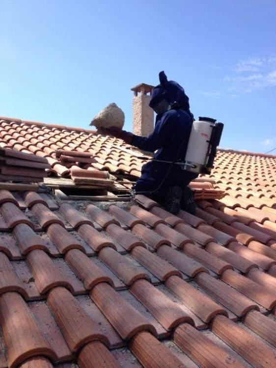 intervention frelons sous toiture maison aurons 13121 combattre les nuisibles d pigeonnage. Black Bedroom Furniture Sets. Home Design Ideas