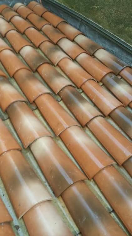 nettoyage et d sinfection de toiture aix en provence 13100 combattre les nuisibles. Black Bedroom Furniture Sets. Home Design Ideas