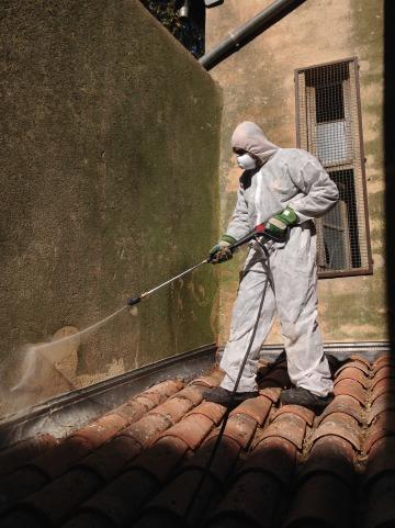 d moussage et nettoyage de toiture haute pression eguilles 13510 combattre les nuisibles. Black Bedroom Furniture Sets. Home Design Ideas