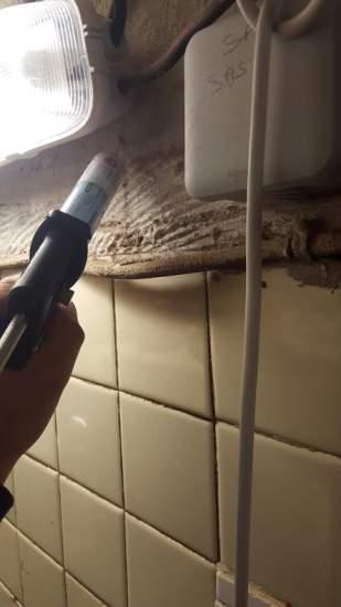 detruire nid de guepes sous toiture a aix en provence 13100 provence nuisibles. Black Bedroom Furniture Sets. Home Design Ideas