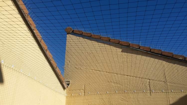 Pose de filet anti pigeon cour int rieure copropri t aix en provence combattre les nuisibles - Faire fuir les pigeons ...
